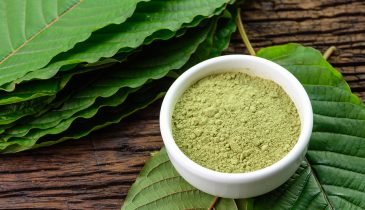 How Can You Find the Best Kratom Vendor in the Market?