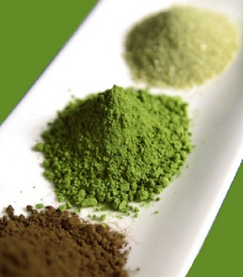 How Can You Find the Best Kratom Vendor in the Market? 1