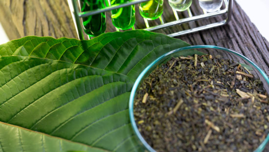 The Many Ways in Which You Can Get and Use Some Kratom Samples 1