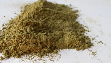 Kratom Silver Extract Stronger than Standard Kratom Strains