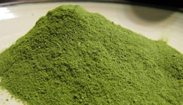Review on Kaya Borneo Kratom: Worth Getting or Not?